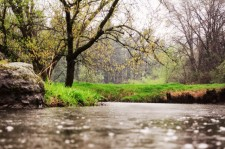 Spring stream wisconsin